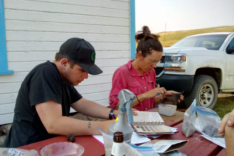 Volunteers analysing data in Oregon