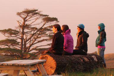 Volunteers at nature sanctuary in New Zealand