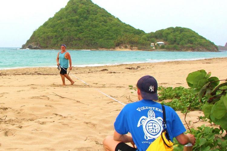 Beach profiling in Grenada