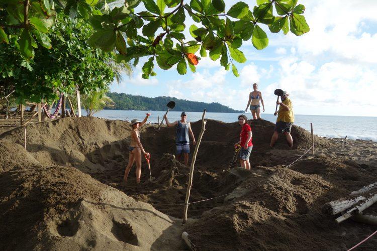 Volunteers digging the hatchery in Costa Rica