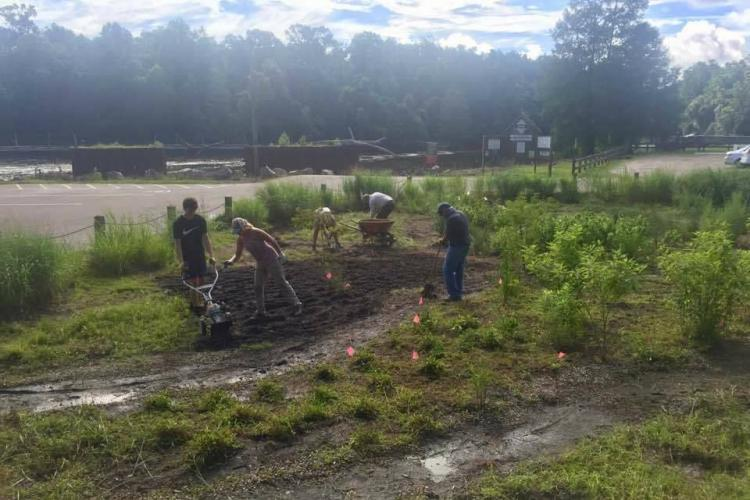 Volunteers gardening in Cape Fear river basin