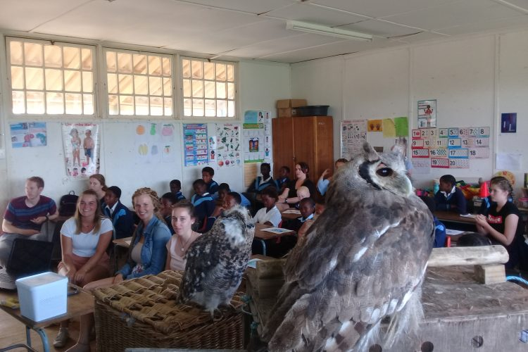Volunteers in school in Kariega
