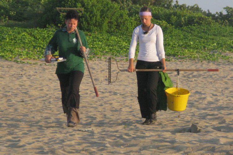 Volunteer raking sand after night patrol