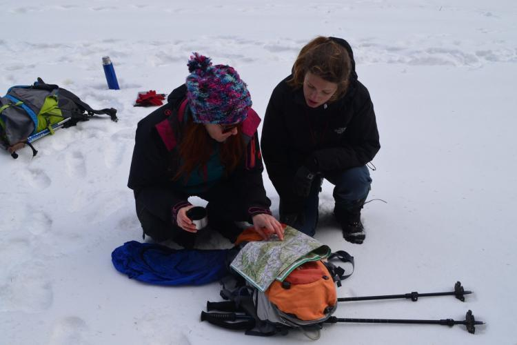 Wolf tracking volunteers reading map