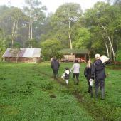 Volunteers walking at nature reserve in Ecuador