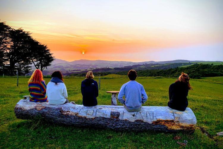 Volunteers watching sunset in New Zealand
