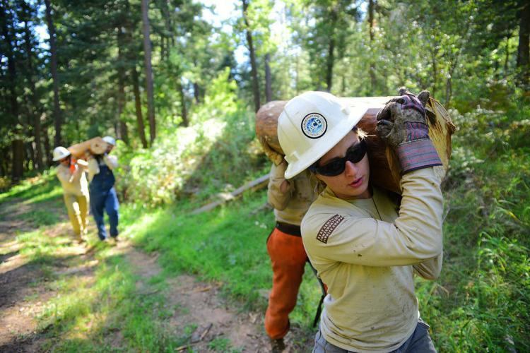 Volunteers doing conservation work in California