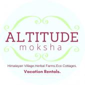 Volunteering at Altitude Moksha in Himalayas India