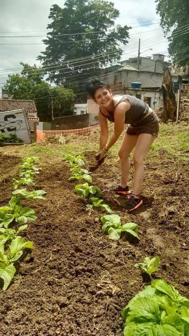 Environmental volunteer in Brazil