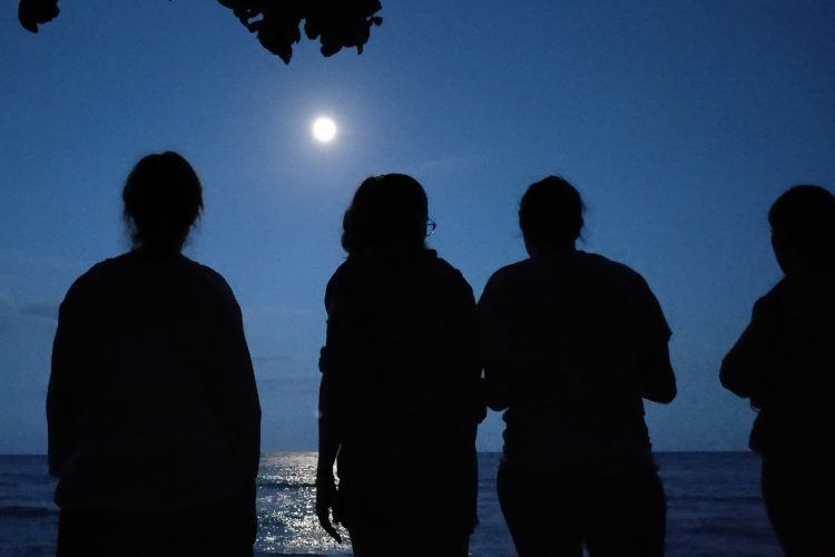Moonrise on Turtle beach project