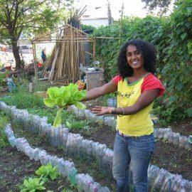 Volunteer in community garden