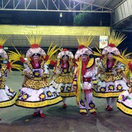 Carnival parade in Rio