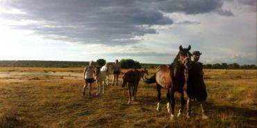 Equine volunteer programme in Namibia