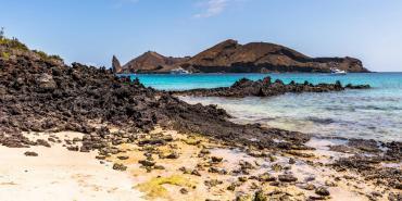 Rocky beach in Galapagos islands Galapagos Volunteering | Working Abroad