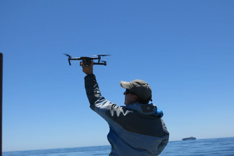 Preparing the drone for aerial photo shots