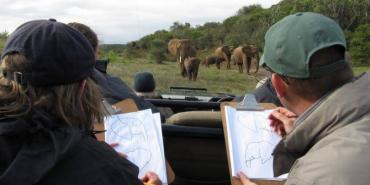 Volunteers collect data on elephant impact monitoring at Kariega
