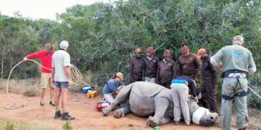 Roland volunteer at Kariega Game reserve