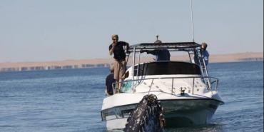 Whale being researched from a boat in Namibia