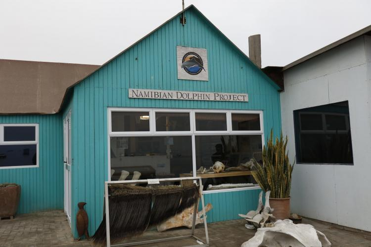 Office in Namibia where interns input data on dolphins