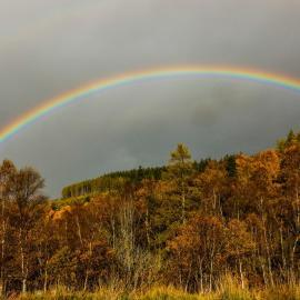 Rainbow over autumn trees in Scotland