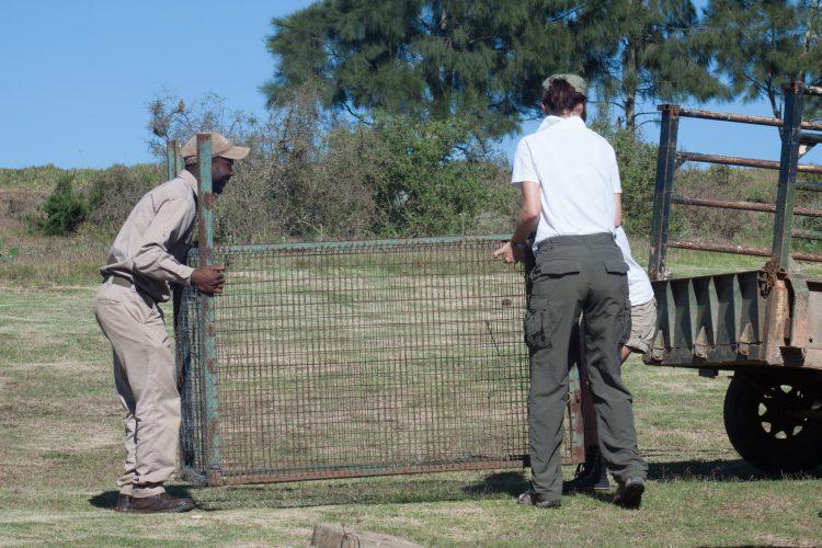 Volunteers do maintenance tasks at Shamwari