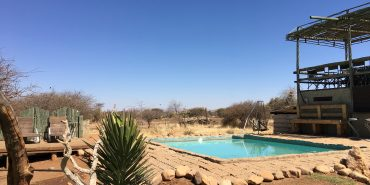 Swimming pool at Wildlife Sanctuary in Namibia