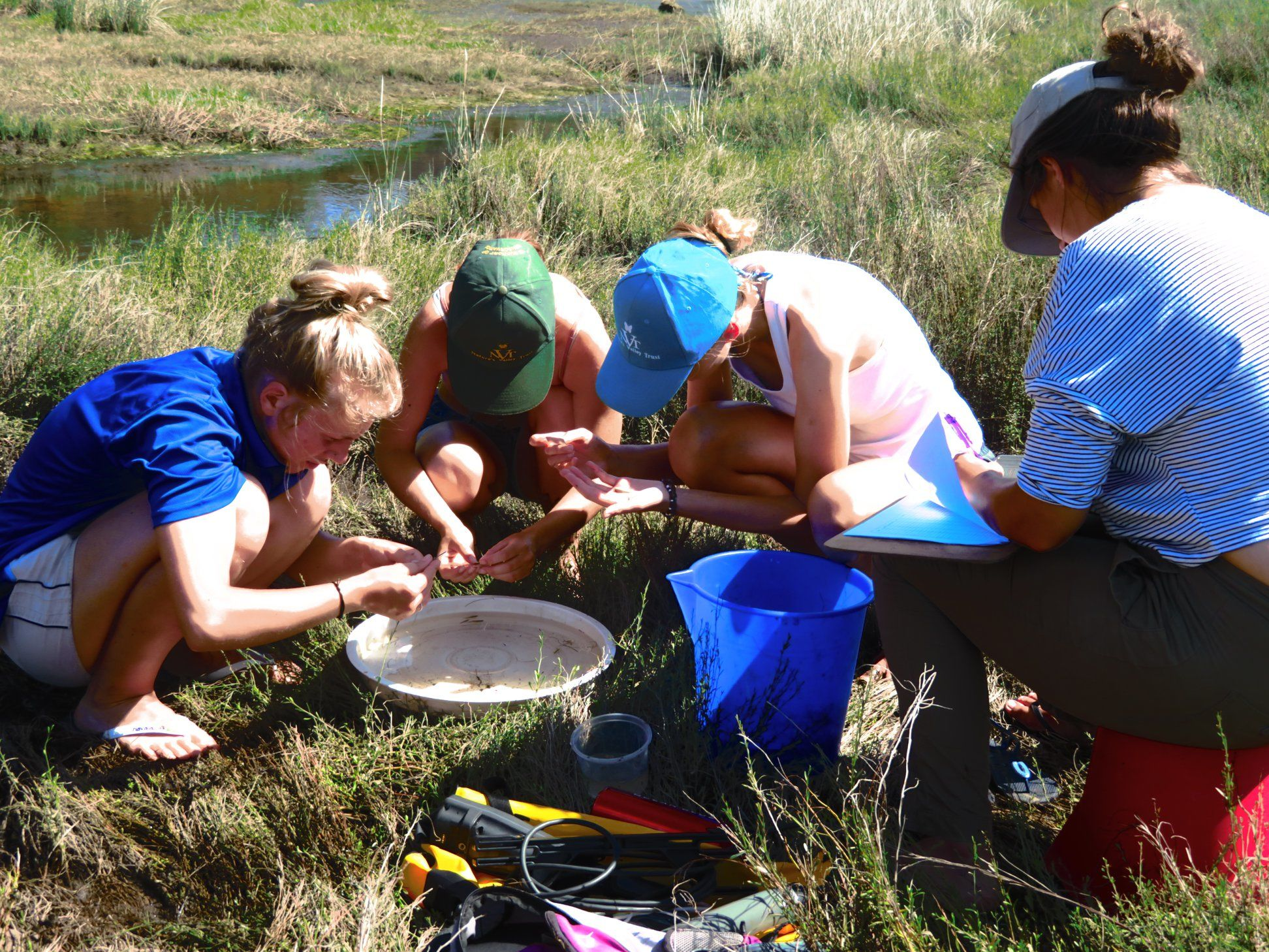 Nature's Valley Conservation Education Volunteers, South Africa