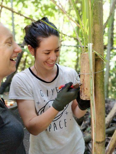 Volunteers preparing bird enrichment