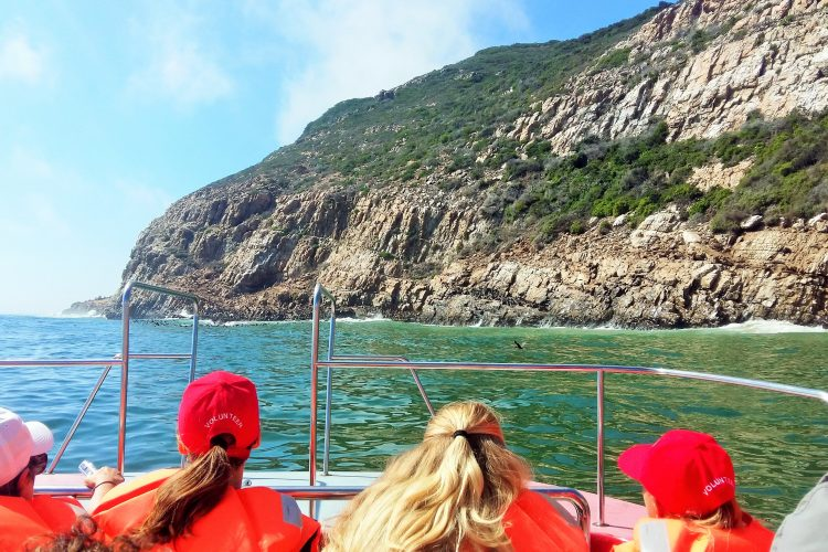 Volunteers on research boat in South Africa