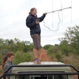 Volunteer Berengere telemetry tracking