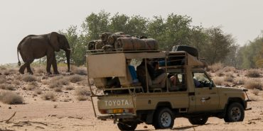 Volunteers in truck with elephant in background in Namibia