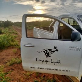 Limpopo research car in Botswana
