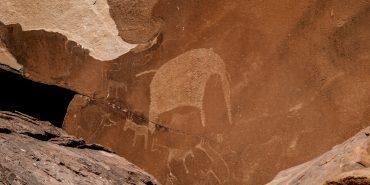 San bushmen cave art elephant in Namibia