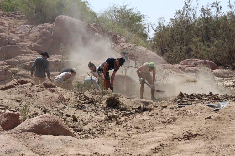 Volunteers digging for rocks in Namibia