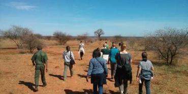 Volunteers walking in the game reserve