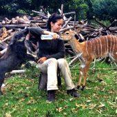 Wildlife Rehabilitation Centre