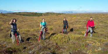 Volunteers doing reforestation work in Iceland