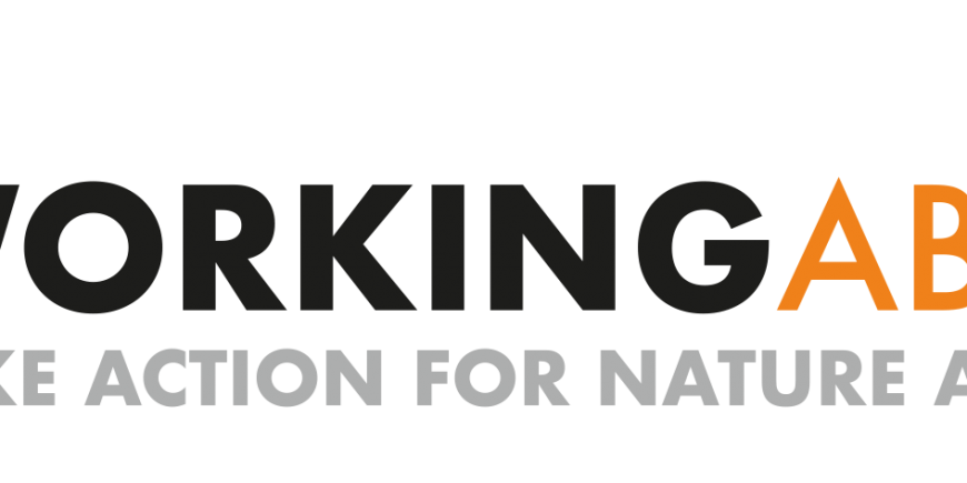WorkingAbroad Logo - Take action for Nature and Society