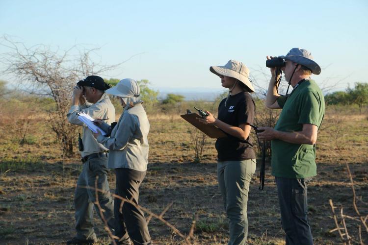Game reserve volunteers in South Africa