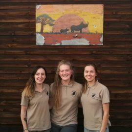 Wildlife volunteers at camp in South Africa
