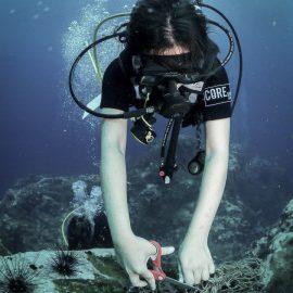 Underwater coral conservation volunteer in Thailand