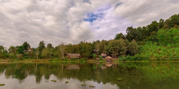Elephant sanctuary in Laos