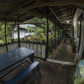 Sabangau camp