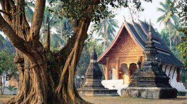 alttagVolunteer in Laos | WorkingAbroad