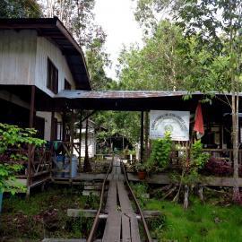 Volunteer camp Sabangau