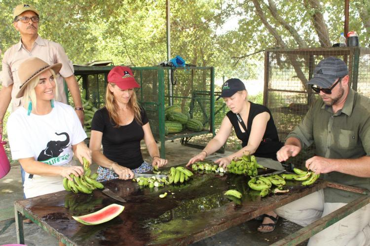 Wildlife sanctuary volunteers preparing food in India
