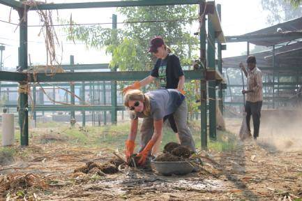 Wildlife sanctuary volunteers in India