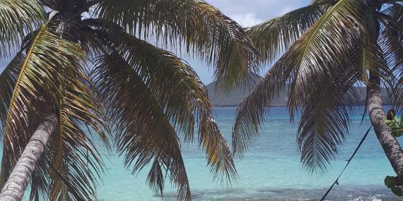 Hammock on beach in Grenada