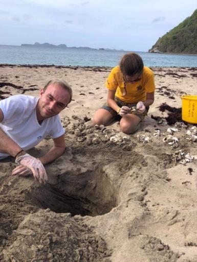 Sea turtle volunteers in Grenada