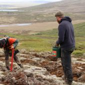 Volunteers doing reforestation in Iceland